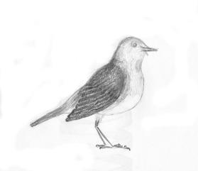 tekening1980_07