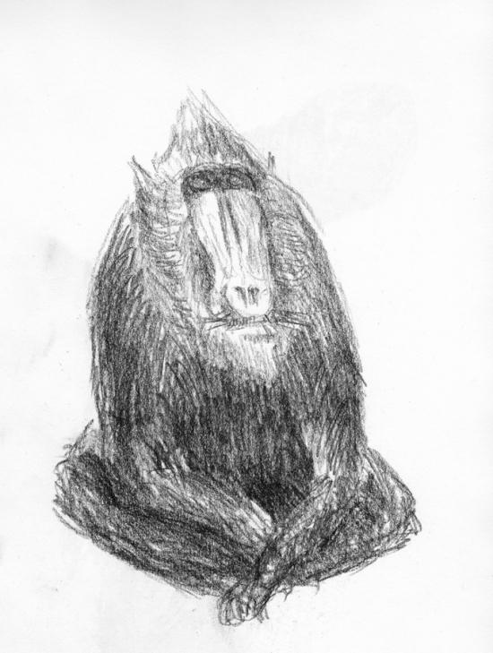 tekening1984_16