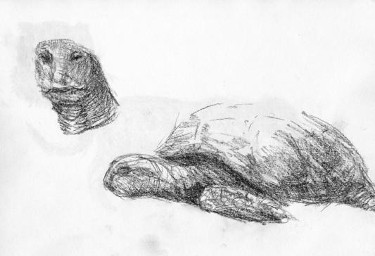 tekening1984_17