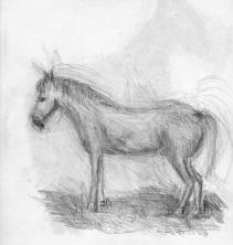 tekening1984_29