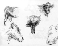 tekening1985_13