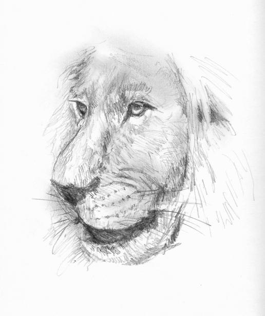 tekening2008_05