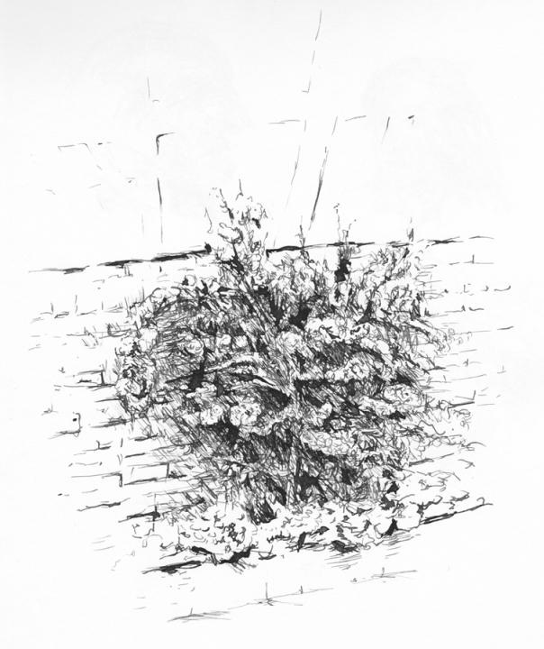 tekening1985_07